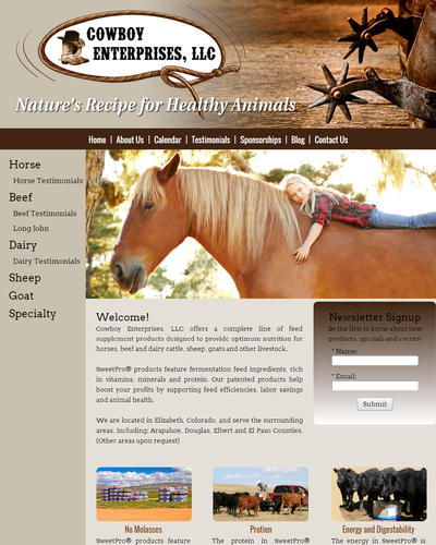 Cowboy Enterprises, Elizabeth, Colorado by W3Now Web Design